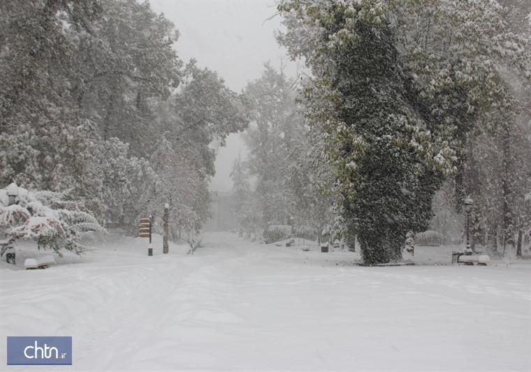 مجموعه فرهنگی تاریخی نیاوران با بارش برف تعطیل شد